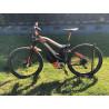 M1 Sporttechnik SPITZING Plus R-Pedelec E-Bike 750W 75km/h Carbon 2018